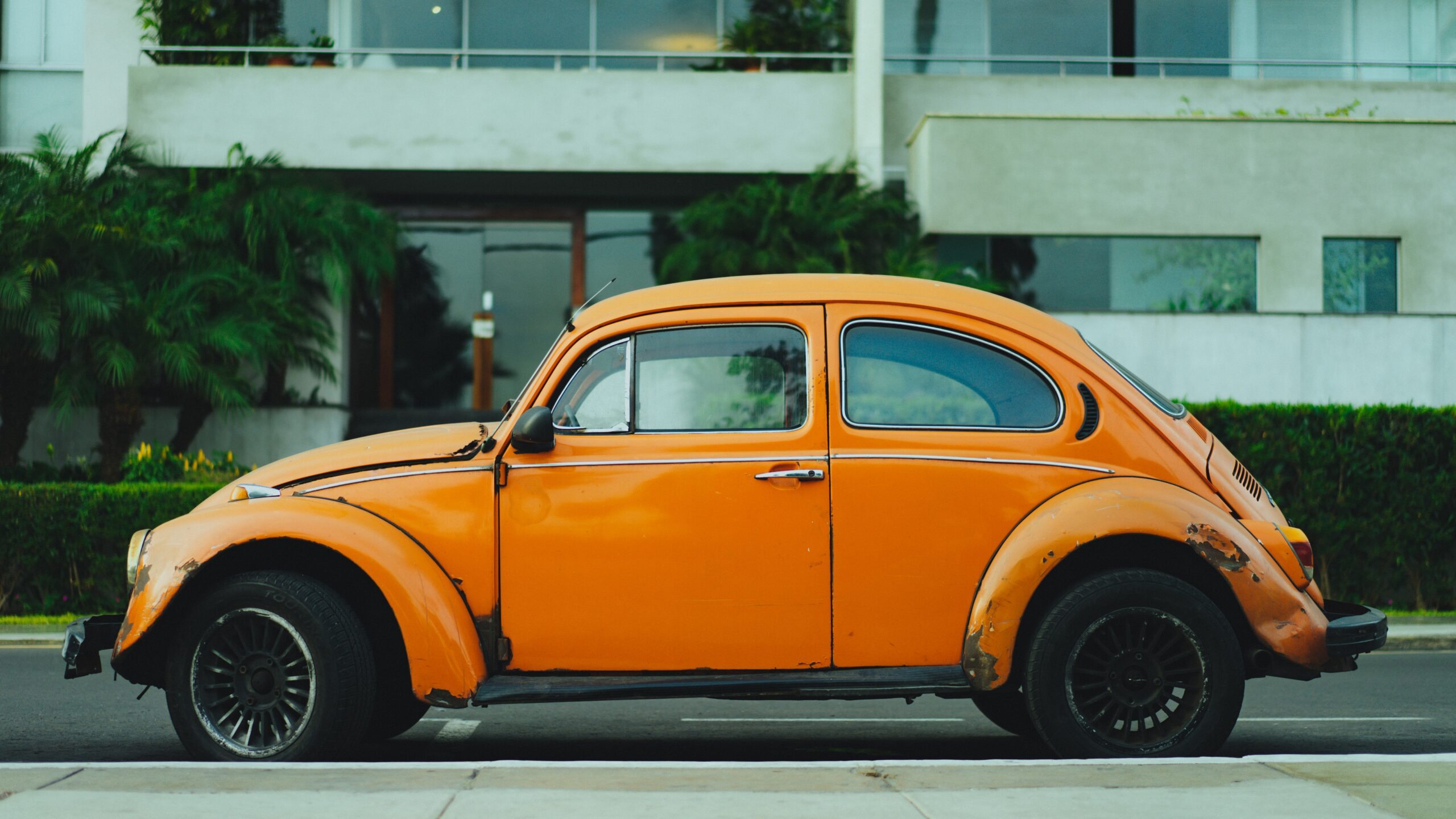 shallow focus photography of orange Volkswagen Beetle